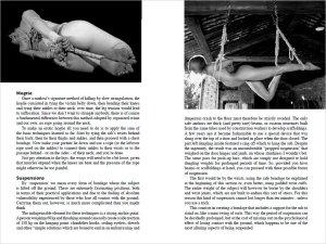 BDSM - Guida per esploratori dell'erotismo estremo (interno 6)