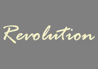 Revolution (2004)